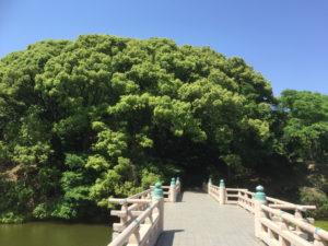河底池から茶臼山