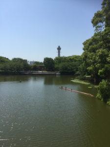 河底池から通天閣