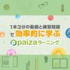 プログラミング入門に最適!初心者でも楽しく学べる動画学習サービス【paizaラーニン